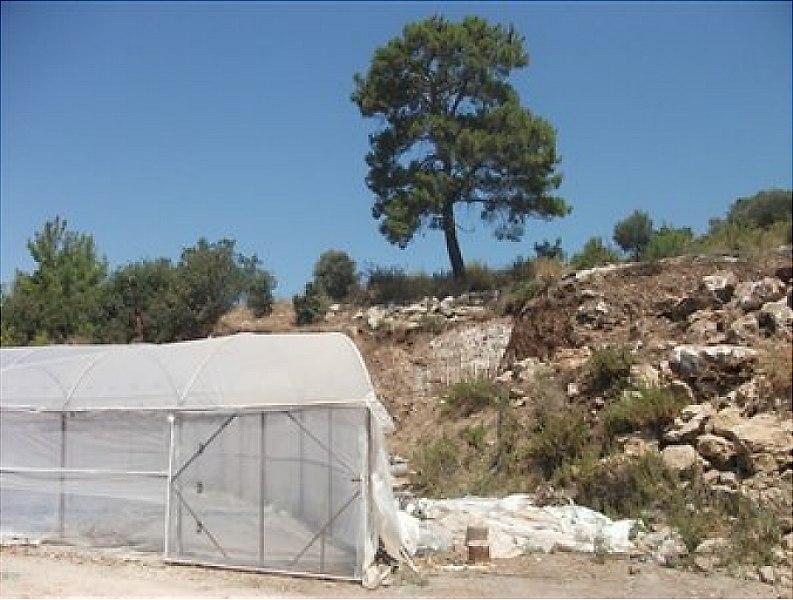 Antalya Kumluca Bankadan Satılık 7849 m2 Bağ & Bahçe