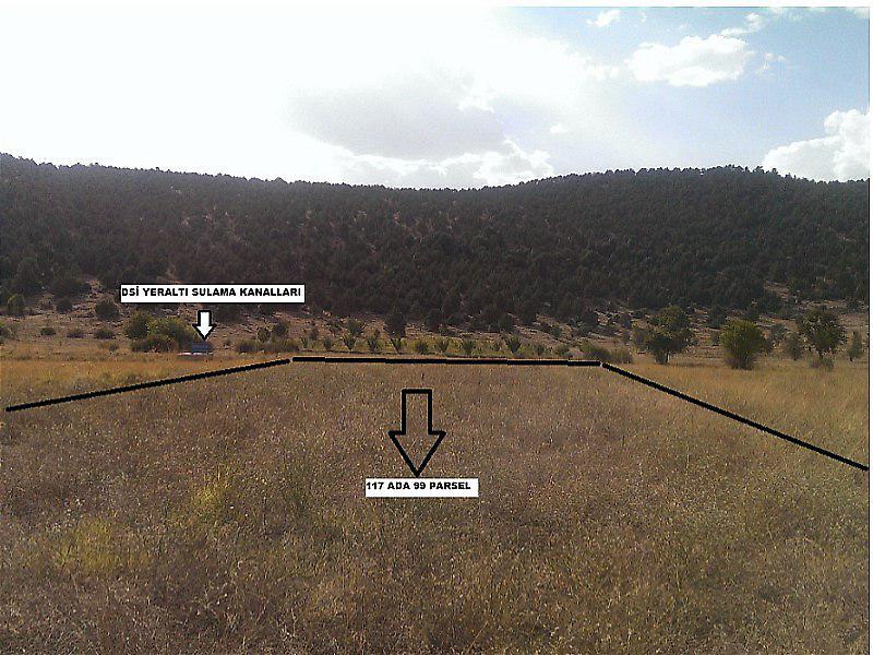 Muğla Fethiye Şirketten Satılık 5844 m2 Tarla