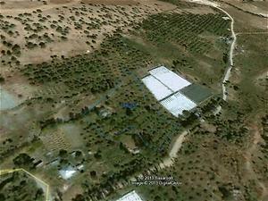 Mersin Erdemli Şirketten Satılık 5391 m2 Bağ & Bahçe