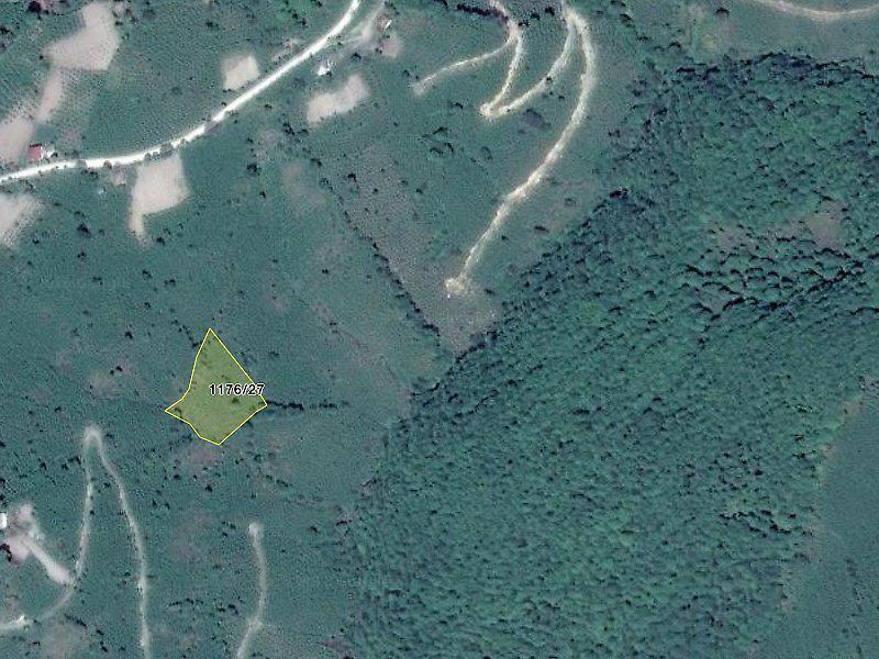 Ordu Gürgentepe'de 3778 m2 Fındık Bahçesi
