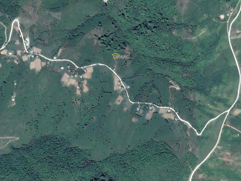 Ordu Gürgentepe'de 877 m2 Fındık Bahçesi
