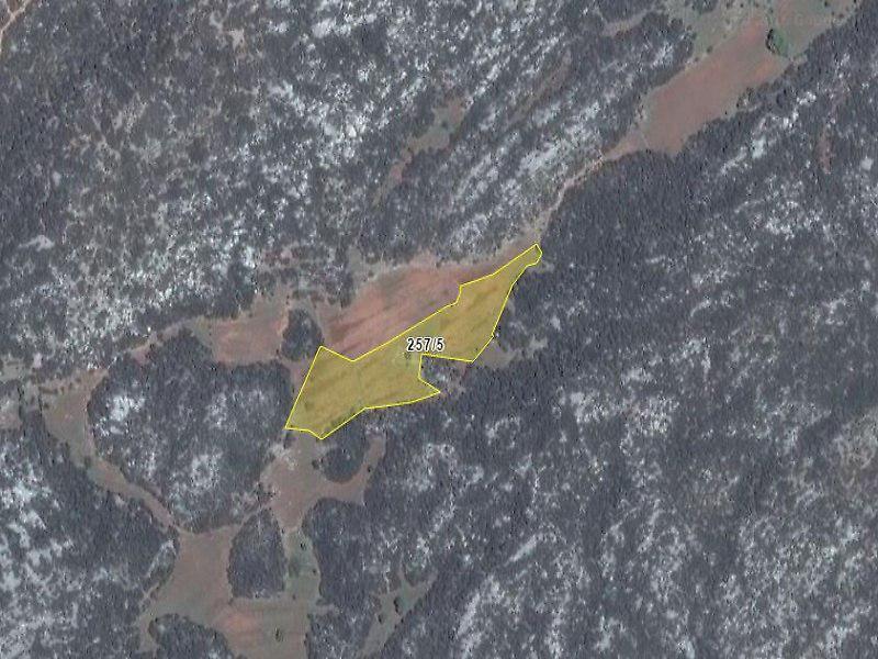 Antalya Kaş Sarıbelen'de 9,737m2 Tarla