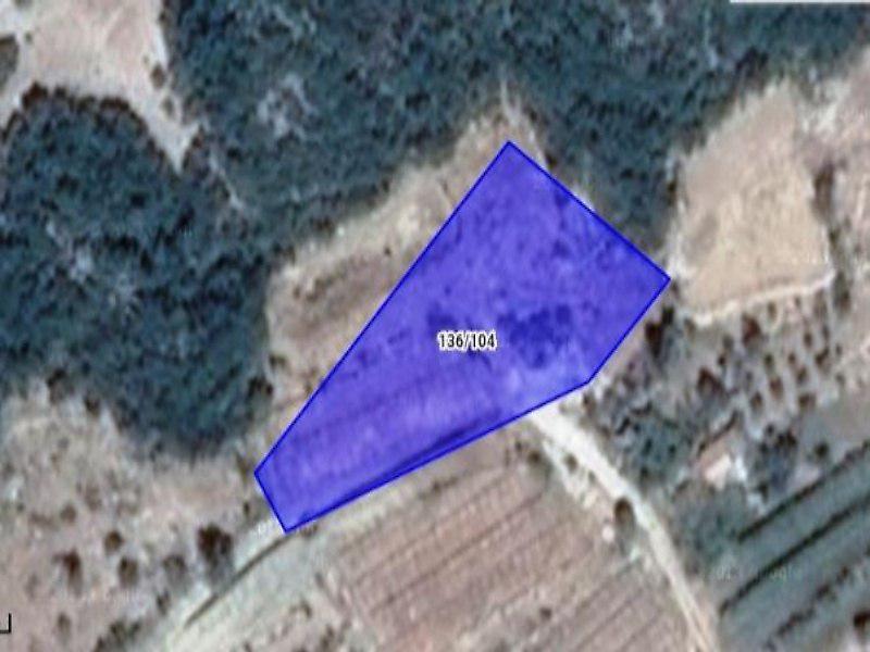 Antalya Kaş Şirketten Satılık 9891 m2 Tarla