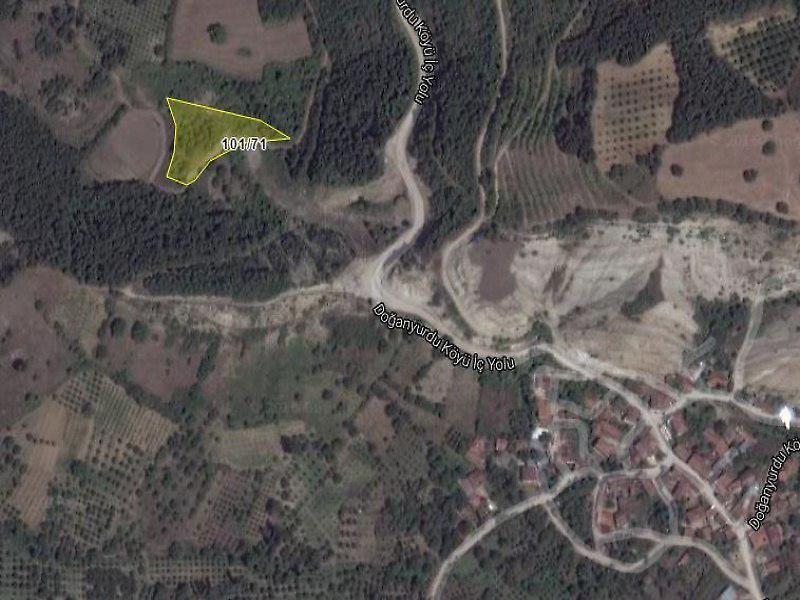 Bursa İnegöl Doğanyurdu 3167m² Meyve Bahçesi