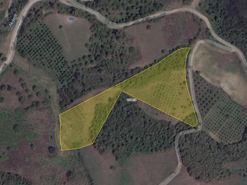 Bursa İnegöl Paşaören'de 14.932 m² Meyve Bahçesi