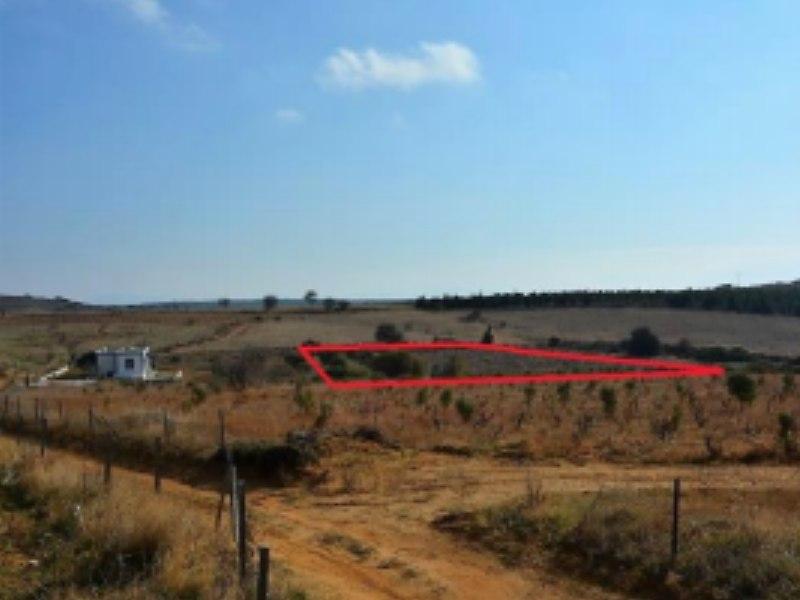 Çanakkale Bozcaada Şirketten Satılık 6863 m2 Bağ & Bahçe