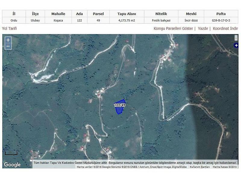 Ordu Ulubey Bankadan Satılık 4173 m2 Tarla