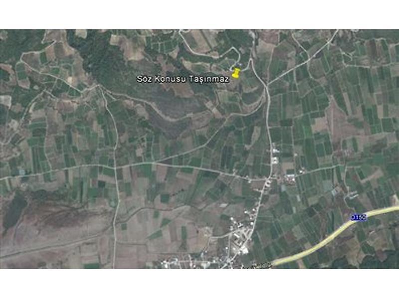 Bilecik Osmaneli Bankadan Satılık 9170 m2 Tarla