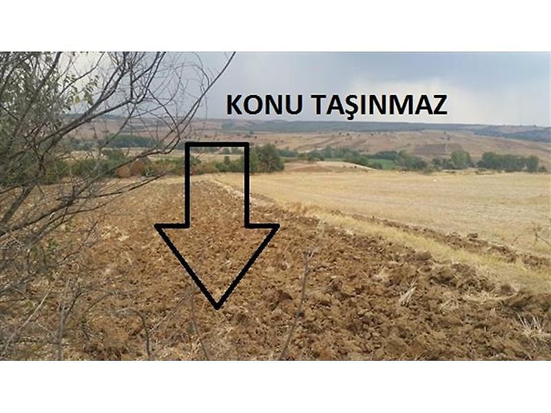 Edirne Uzunköprü Bankadan Satılık 2250 m2 Tarla