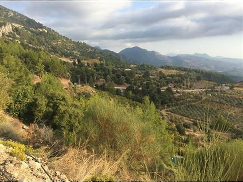 Antalya Kumluca Bankadan Satılık 11824 m2 Bağ & Bahçe