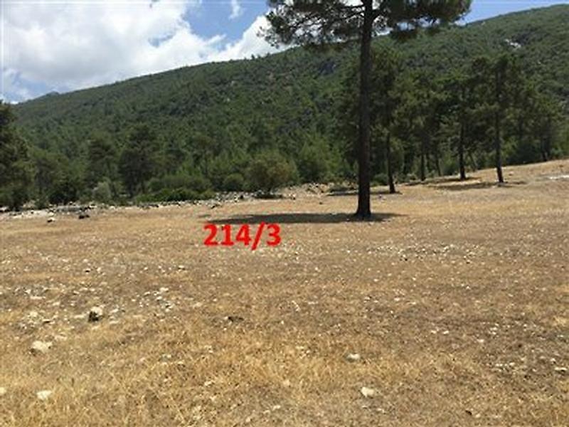 Antalya Kaş Bankadan Satılık 2208 m2 Tarla