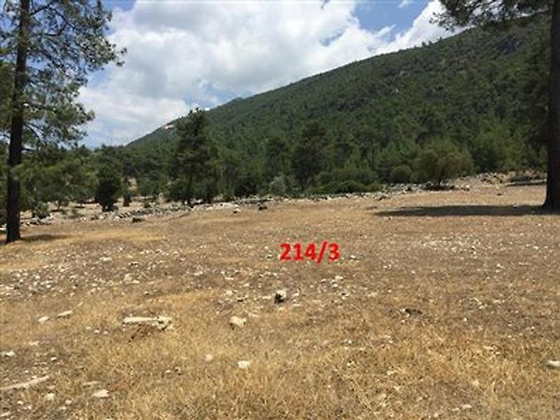 Antalya Kaş Karadağ Köyünde 2208 m2 Tarla