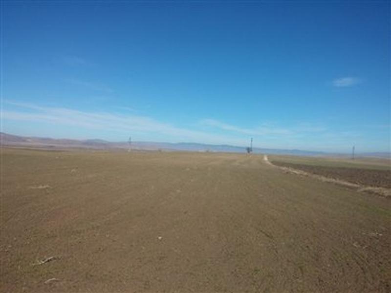 Afyonkarahisar Sandıklı Kusura köyünde 4550 m2 Tarla