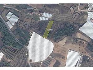 Antalya Alanya Bankadan Satılık 3857 m2 Tarla