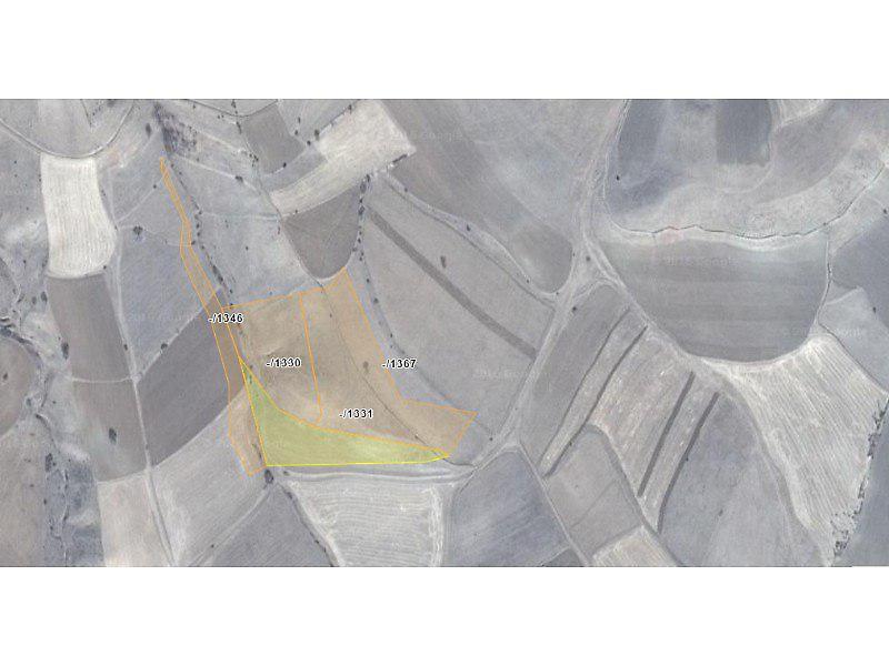 Gümüşhane Köse Bankadan Satılık 6700 m2 Tarla
