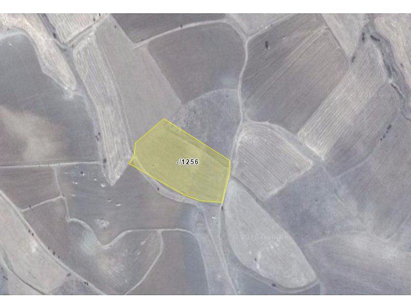 Gümüşhane Köse Akbaba Köyü'nde 13.100 m2 Tarla