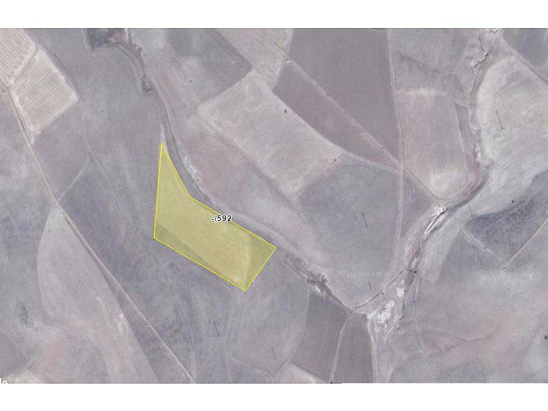 Gümüşhane Köse Bankadan Satılık 14100 m2 Tarla
