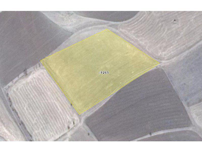 Gümüşhane Köse Akbaba Köyü'nde 15.850 m2 Tarla