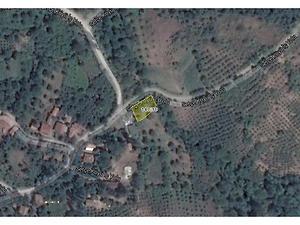Sakarya Geyve Bankadan Satılık 3882 m2 Tarla