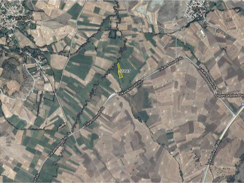Tokat Merkez Uğrak Köyü'nde 5550 m2 Tarla