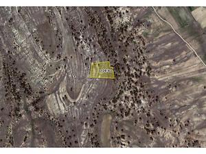 Mersin Mut Bankadan Satılık 16500 m2 Tarla