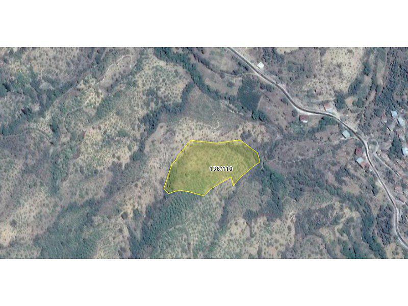 Aydın Nazilli Bankadan Satılık 14476 m2 Bağ & Bahçe