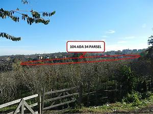 Samsun Terme Bankadan Satılık 11991 m2 Bağ & Bahçe