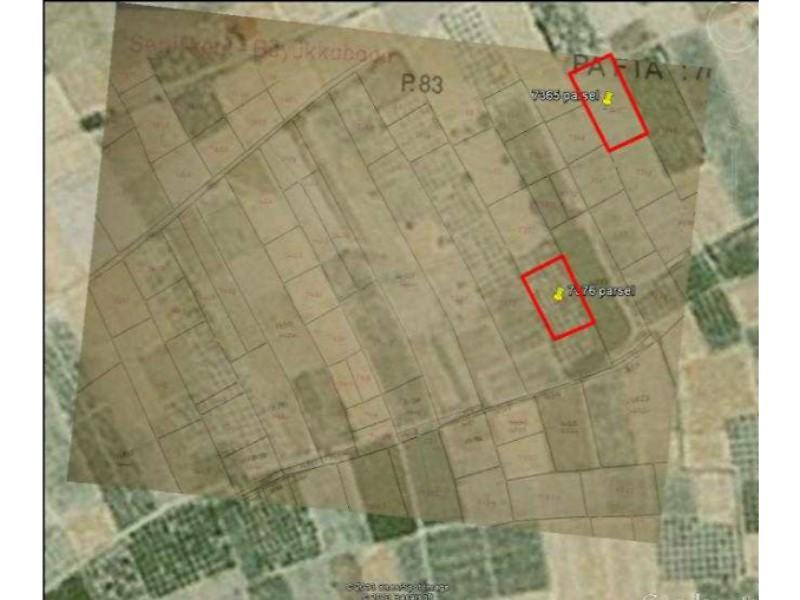 Isparta Senirkent'te 3000m2 Elma Bahçesi