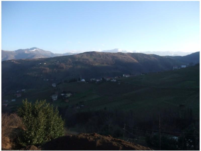Trabzon Akçaabat' ta 8329 m2 Tarla, Kargir Ev ve Samanlık