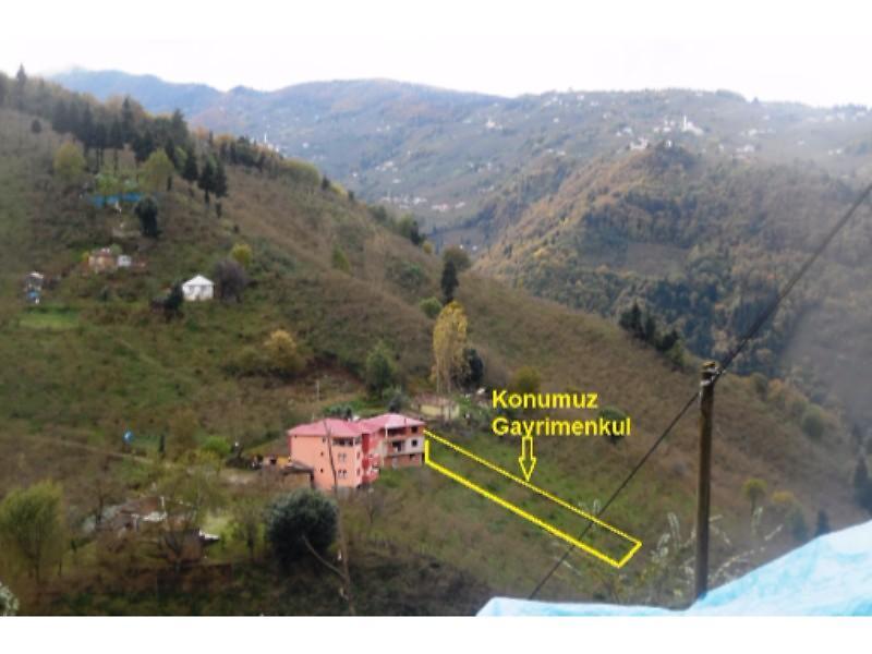 Trabzon  Ortahisar'da  872,64 m2 Tarla ve Fındık Bahçesi