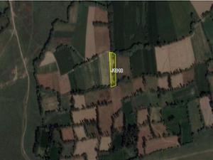 Afyonkarahisar Sinanpaşa Bankadan Satılık 2726 m2 Tarla