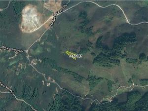 Sakarya Kocaali Şirketten Satılık 5652 m2 Bağ & Bahçe