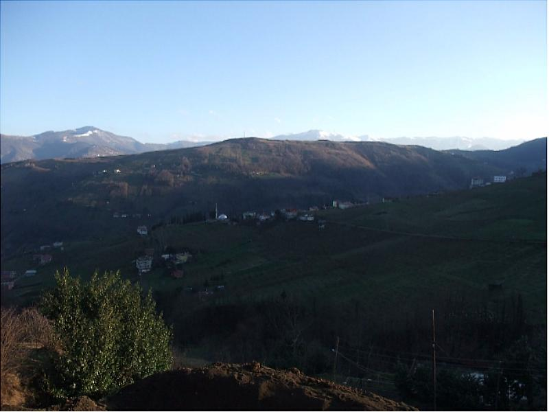 Trabzon Akçaabat'ta 5238m2 Tarla