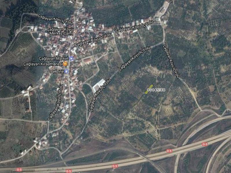 Bursa Osmangazi Çağlayan Köyü 418 m2 Zeytinlik