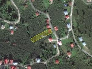 Giresun Piraziz Şirketten Satılık 758 m2 Bağ & Bahçe