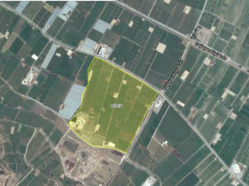 Manisa Alaşehir İlçesi'nde Alhan Köyü Hisseli Tarla