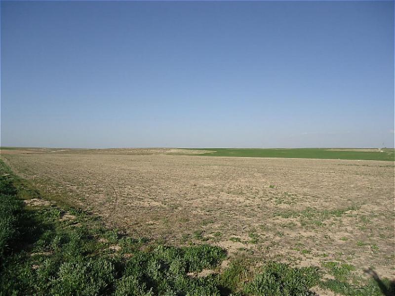 Aksaray Eskil'de 13.100 m2 Arsa