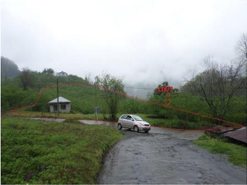 Trabzon Vakfıkebir Hisseli Fındık Bahçesi