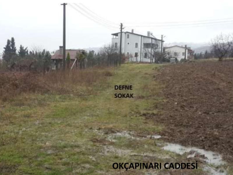 Yalova Altınova Kaytazdere'de 4 Adet İmarlı Arsa 1447 m2