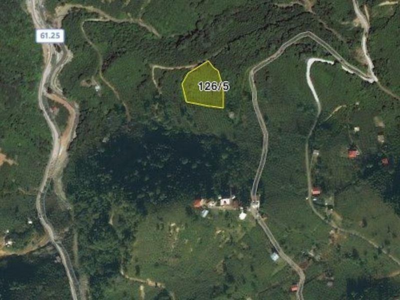 Trabzon Yomra İlçesi Taşdelen'de  5737 m2 Fındık Bahçesi