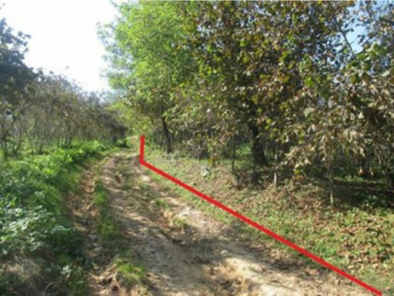 Samsun Terme Bankadan Satılık 10085 m2 Bağ & Bahçe