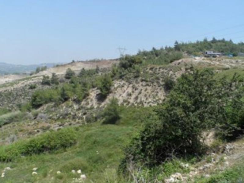 Mersin Akdeniz Bağcılar İhsaniye'de 2753 m2 Tarla