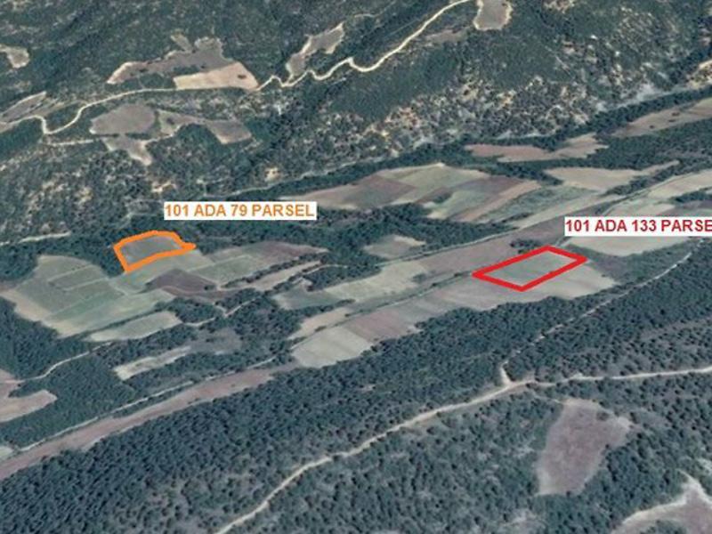 Sakarya Geyve'de 6.778 m2 Tarla