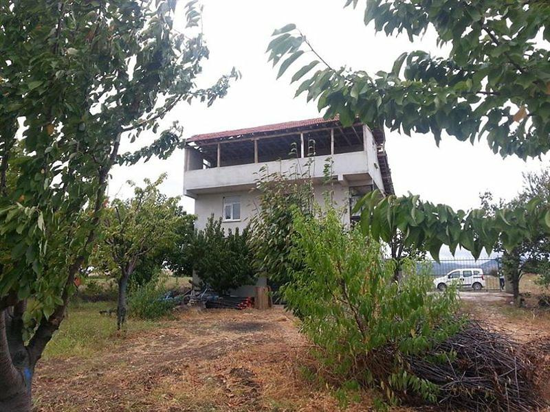 Amasya Taşova Bankadan Satılık 5355 m2 Tarla