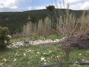 Antalya Kaş Bankadan Satılık 3255 m2 Bağ & Bahçe