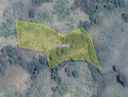 Aydın Nazilli'de 10.217m2 2 Adet Tarla