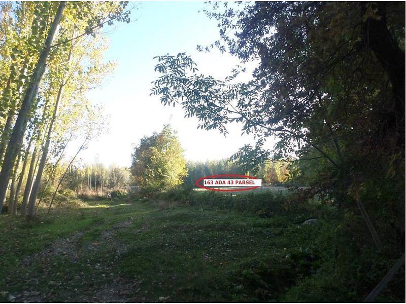 Kastamonu Taşköprü Şirketten Satılık 8550 m2 Bağ & Bahçe
