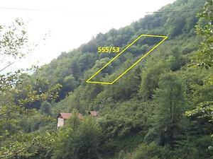 Artvin Borçka Bankadan Satılık 3080 m2 Bağ & Bahçe