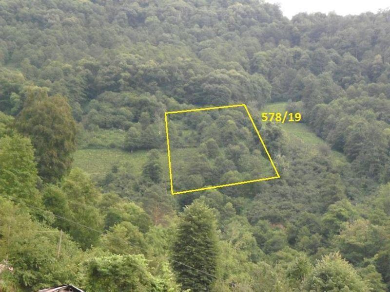 Artvin Borçka Karşıköy Köyünde 2181 m2 Çay Bahçesi