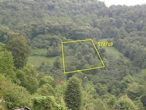 Artvin Borçka Bankadan Satılık 2181 m2 Bağ & Bahçe